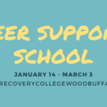 Peer support school